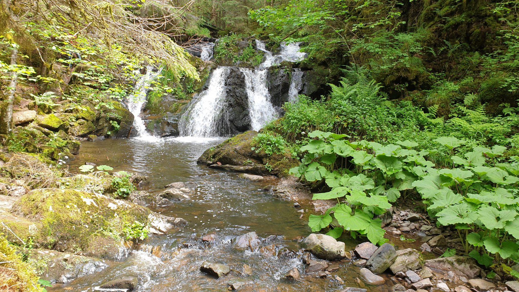 Wasserfall in der Rötenbachschlucht des Schluchtensteig