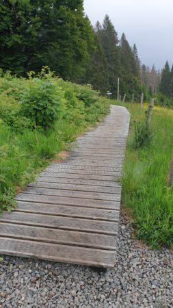 Holzstege überbrücken sumpfige Stelle auf dem Lebküchlerweg
