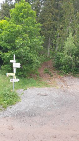 Wegweiser hinter der Staumauer  Gerade aus geht es in den Wald  zum Katharinenfluh Klettersteig