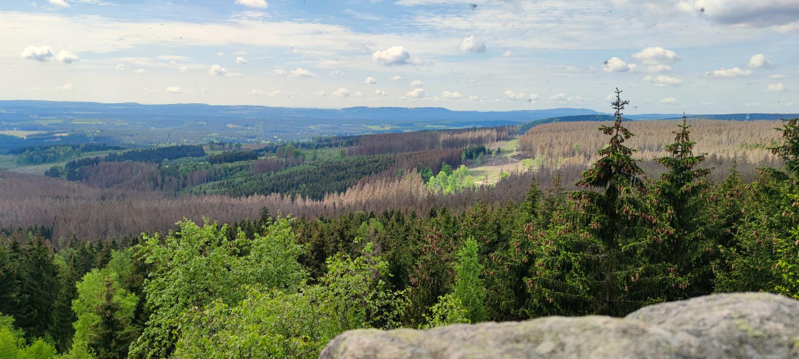 Ausblick auf den Harz
